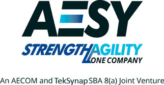 TekSynap (formerly Synaptek Corporation) Forms AESY Joint Venture