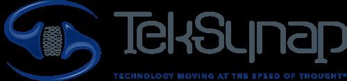 TekSynap Horizontal Logo 3D with Tagline