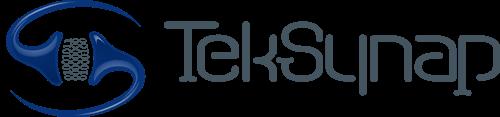 TekSynap Horizontal Logo 3D without Tagline