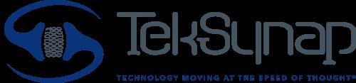 TekSynap Horizontal Logo Flat with Tagline
