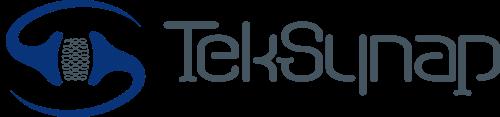 TekSynap Horizontal Logo Flat without Tagline