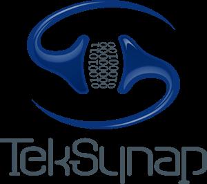 TekSynap Stacked Logo 3D without Tagline