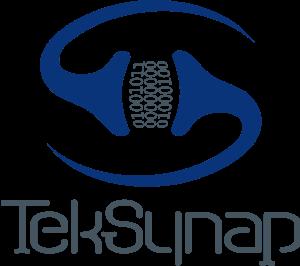 TekSynap Stacked Logo Flat without Tagline