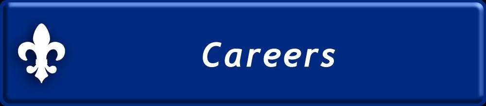 TekSynap Careers
